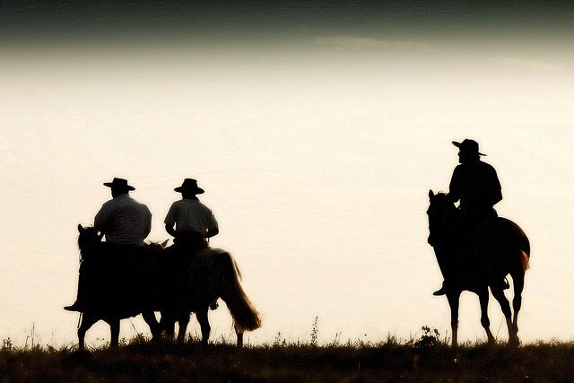 סוס לרכב עליו, תמונה Eduardo Amorim