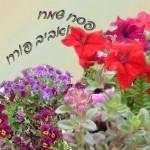 אני ה' אלהיכם אשר הוצאתי אתכם מארץ מצרים להיות לכם לאלהים אני ה' אלהיכם.