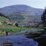 מהו שורש עמידת מרדכי ואסתר בפני גזרות המן ומה הקשר שלה למאבק יעקב אבינו בנחל יבוק?