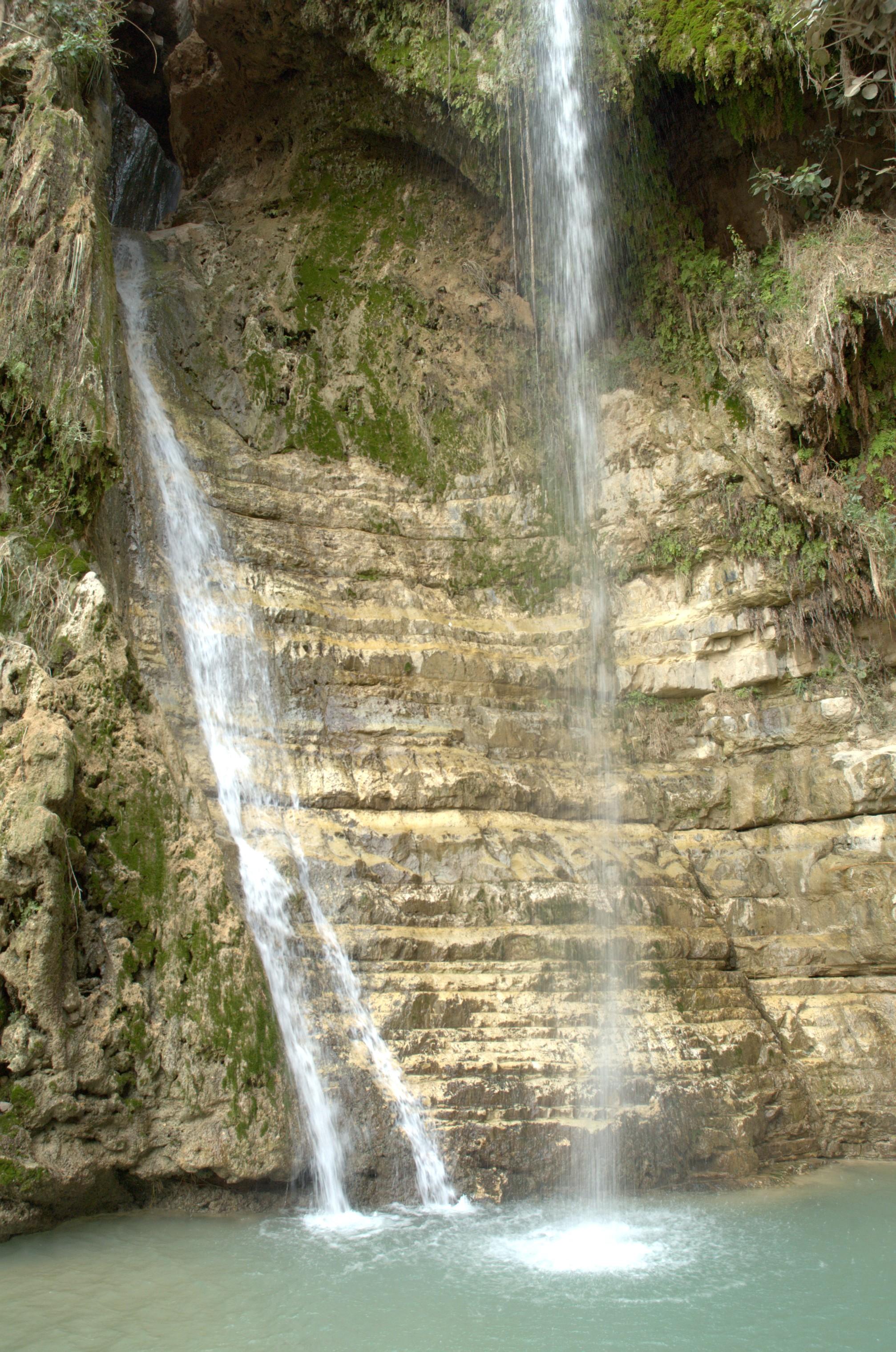 מפל דוד שמורת הטבע עין גדי, תמונה ויקיפדיה