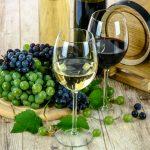 """משמעות ד' כוסות היין שאנו שותים בט""""ו בשבט"""