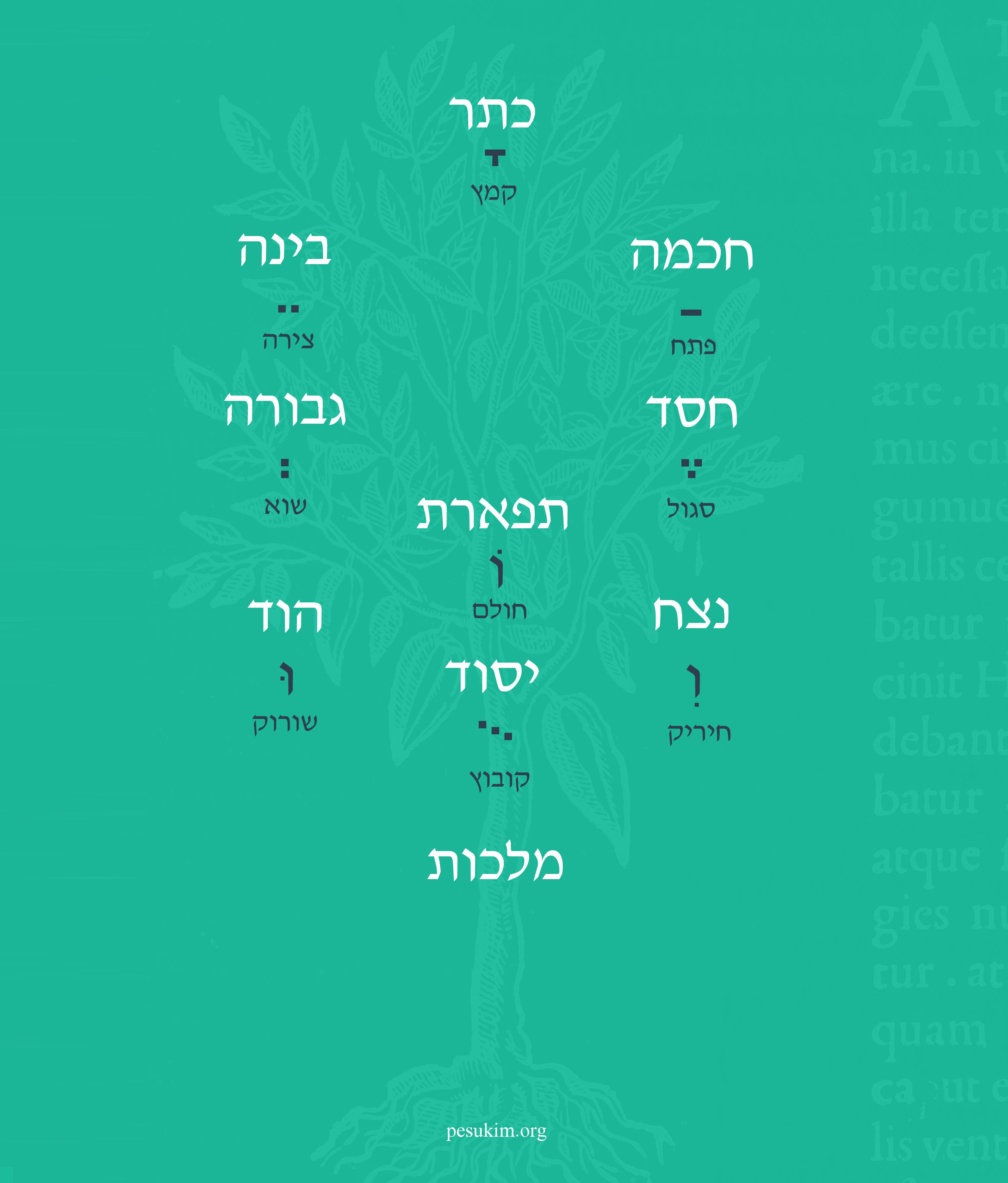 עץ חיים והשתלשלות הניקוד העברי ממנו